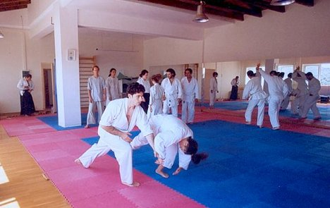 Aikido seminar at Stalos Dojo on June 4-5, 2005